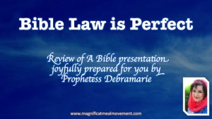 Bible Law Is Perfect Part 1 - Bible Study With Debramarie  - MMM