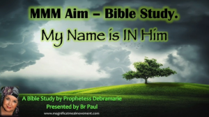My Name Is In Him Magnificat Meal Movement Bible Study