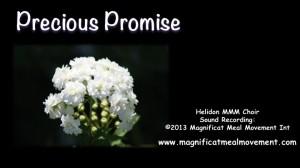 Precious Promise