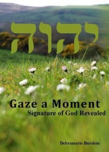 Magnificat Meal Movement eBook Gaze A Moment By Mother Debra Marie Burslem
